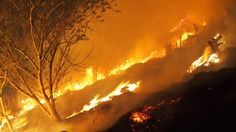 Homes destroyed, hundreds evacuated as Christchurch Port Hills fires rage out of control Destruction, Rage, New Zealand, Wednesday, Trees, Victoria, Sunset, Outdoor, Outdoors