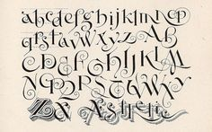 Rare Books on Calligraphy and Penmanship | Typeology. Alphabet A-Z