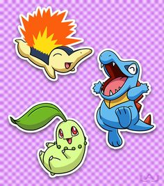 The Johto Pokemon Starters (Cyndaquil, Totodile, and Chikorita) are the only starters where their entire evolution line doesn't get a second type.
