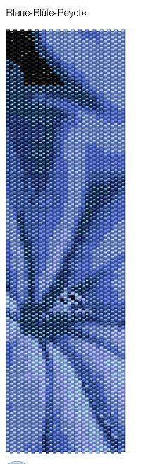 Blaue-Bl%C3%BCte-Peyote+17.03.2011+125819.bmp.jpg 207×655 pixels