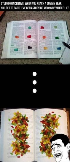 Why didn't I think of this? #Finals #Studying #GummyBears