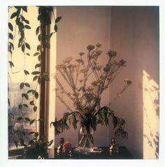 Andrei Tarkovski Polaroid Photograph - ( Polaroid print)