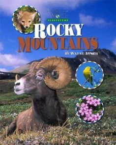 Takes you on a personal tour through the Rocky Mountains ecosystem. Process Of Change, Physical Geography, Grade 3, Rocky Mountains, Geology, Social Studies, Study, Science
