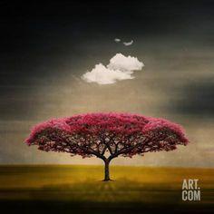 Art.fr - Reproduction d'art 'Le nuage de la méduse' par Philippe Sainte-Laudy