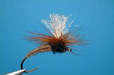 Fly of the Month: May 2012- Klinkhamer Special