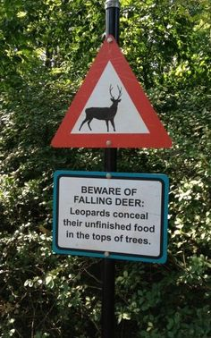 how about beware of leopards!