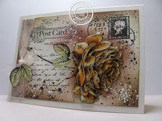 #joy!crafts stempel Old Letter Rose