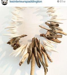 Cuttlefish driftwood.