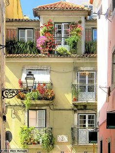 Typical #Lisbon neighborhoods with its varandas/small terraces with flowers #Portugal #PortugalFlowerPower