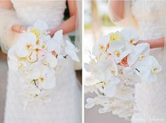 Cascading Wedding Bouquet of phaleonopsis orchids and peach garden roses