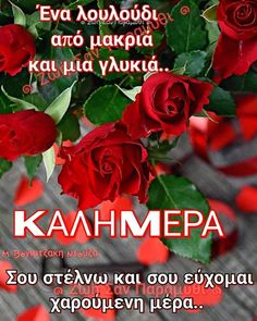 Good Afternoon, Good Morning, Funny Greek Quotes, Happy Wishes, Anastasia, Beautiful Pictures, Buen Dia, Bonjour, Bom Dia