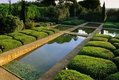 Harpur Garden Images Ltd :: View across long rectangular water rill edged by low cloud pruned Buxus shapes. Symmetrical design green foliage Designed by Fernando Caruncho Camp S Arch Menorca Jerry Harpur Cat no: Notes: Camp S'Arch, Menorca Desi Creative Landscape, Garden Landscape Design, Landscape Architecture, Formal Gardens, Outdoor Gardens, Amazing Gardens, Beautiful Gardens, Nature Green, Parks