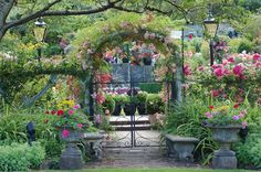 Butchart Gardens, Brentwood Bay, British Columbia, Canada. Rose covered gate photo by Nancy Hann.