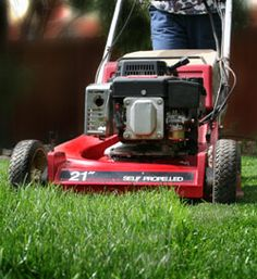 11 Lawn Mower Care Tips - Keep your Lawn Mower in Top Shape for Easier Lawn Care and a Healthier Lawn