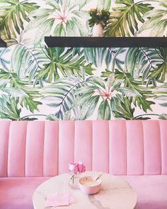 Holy Matcha, San Diego Instagram: @brievannieulandee