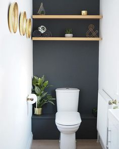 storage over toilet ~ storage over toilet + storage over toilet in small bathroom + storage over toilet ideas + storage over toilet small spaces Bad Inspiration, Bathroom Inspiration, Bathroom Ideas, Bathroom Designs, Bathroom Interior, Modern Bathroom, Minimal Bathroom, Small Bathroom Paint, Small Toilet Room
