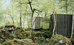 Juvet Landscape Hotel: Escape to the Norwegian Woods