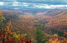 Pennsylvania: Top Mountain Trail in Bald Eagle State Forest
