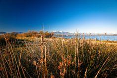 Balade le long de l'étang de Canet #ILoveCanet