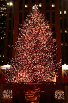 I rally would love to see the Rockefeller Center Christmas tree. Christmas In The City, New York Christmas, Beautiful Christmas Trees, Christmas Scenes, Merry Little Christmas, Winter Christmas, Christmas Lights, Christmas Holidays, Christmas Decorations