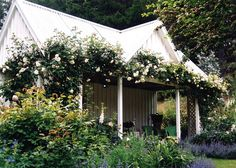 Barewood Garden~Marlborough, New Zealand | Vintage Rose Garden