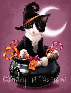 Halloween Pictures, Halloween Cat, Halloween Themes, Vintage Halloween, Happy Halloween, Gato Grande, Witch Art, Cat Cards, Here Kitty Kitty