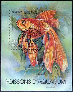 Madagascar.  AQUARIUM FISH.  CARASSIUS AURATUS.  Scott 1199 A366, Issued 1994 June 28, Litho, Perf. 12 1/2 x 12, 2000. /ldb.