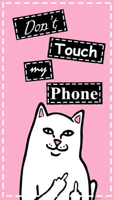 Cat doing Fuck you Wallpaper Dont touch my phone wallpaper ripndip