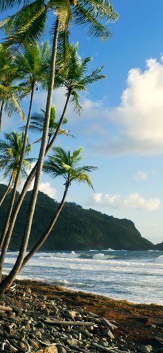 #Jetsetter Daily Moment of Zen: Rosalie Bay Resort in Rosalie, #Dominica