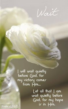 God wants you to know that prayer is real only when done with your whole heart. Reserve the sound of your voice for other people. God hears only what's in your heart. Praise the Lord! Wait in His presence...