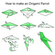 Steps How to Make a Origami Parrot Origami Design, Diy Origami, Origami Parrot, Origami Bird, Origami Folding, Paper Crafts Origami, Useful Origami, Origami Stars, Origami Flowers