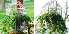 birdcage planters- this would be cute in a cottage style garden