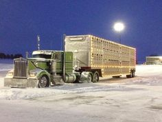 KW cow hauler in the snow | Want to get more such photos & truck related memes! | Just visit www.dieseltees.com #dieseltees #trucks
