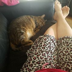 Today's office: the loveseat in jammies with my sweet #JaynieCat. Another reason to #WorkAtHome.  Who else has an office like mine?  Share your pics!  #GoAwayHeadache  #homeschooling #mompreneur  #MDavisIndSSD