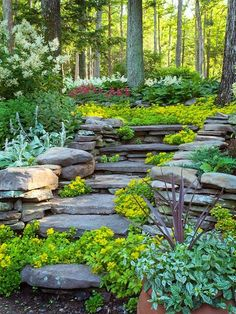 This is beautiful and has some elements that inspire me, such as the layering of plants and the colors. Much as the look of the steps appeal to me, the angle of the slope that I'm tackling calls for steps that are regular in height and depth to avoid missteps and falls. Still, lots of inspiration in this garden. ~EBM