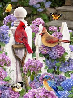 Cardinals & Friends Jigsaw Puzzle | New Jigsaw Puzzles | Vermont Christmas Co. VT Holiday Gift Shop