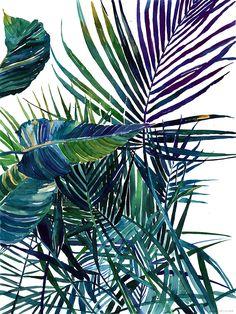 watercolor jungle on Behance Maja Wrońska Watercolor Flowers, Watercolor Paintings, Watercolours, Art Tropical, Tropical Leaves, Deco Nature, Plant Painting, Jungle Print, Arte Floral