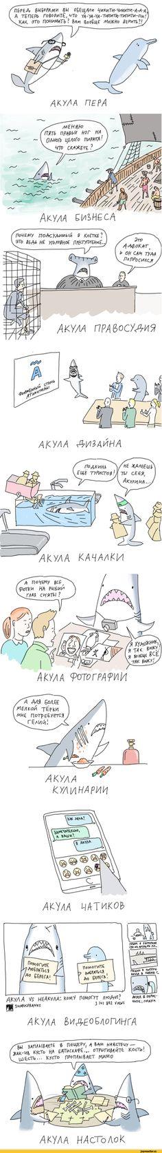 duran,Смешные комиксы,веб-комиксы с юмором и их переводы,акула,песочница