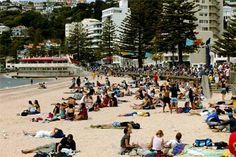 Oriental Bay - central city beach, in New Zealand's capital city, Wellington. Wellington City, Wellington New Zealand, New Zealand Houses, Central City, Draw On Photos, New Zealand Travel, South Island, City Beach, British Isles