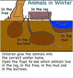 Winter weather offers many opportunities for children to investigate winter science and math activities. Read to find out ways to introduce symmetry, ordinal numbers, cl Kindergarten Bulletin Boards, Kindergarten Math Activities, Preschool Science, Science Classroom, Teaching Science, Life Science, Children Activities, Winter Activities, Science Activities