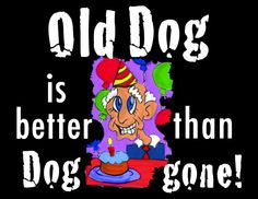 "Over-the-Hill sign in fun ""Old Dog is better than Dog gone"" design"