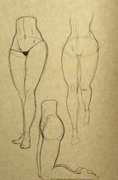 Drawing tutorial - Request - Butts and such - Album on Imgur