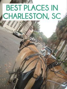 Best Places in Charleston, SC