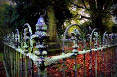 Old cemetery, cnr Symonds St & K'Rd, Auckland