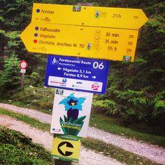 Schilderwald in der Forstau . Signs, Tours, Shop Signs, Sign