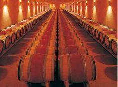 Kosher Travel to the elegant Domaine Du Castel Winery
