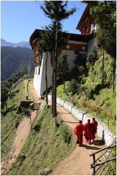Tango Monastery . Thimphu, Bhutan