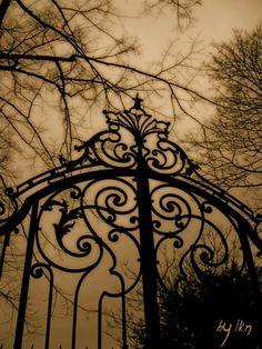 gothic gate cemetery alpha noir / black and white Gothic Aesthetic, Slytherin Aesthetic, Dark Fantasy, Fantasy Serie, Wallpaper Harry Potter, Ange Demon, Arte Obscura, Sombre, Dark Photography