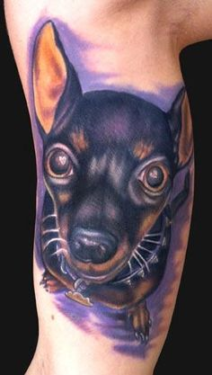 Katelyn Crane - Min Pin Dog tattoo