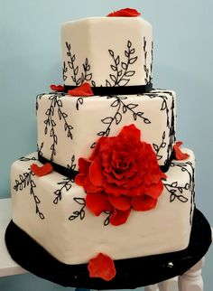 Red and black vine cake
